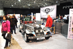 jba falcon stoneleigh 2011
